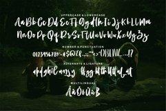 Web Font Aulia - Beauty Script Font Product Image 6
