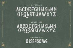 Wake Snake - Decorative Vintage Typeface Product Image 6