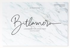 Bitlamero Script Product Image 1