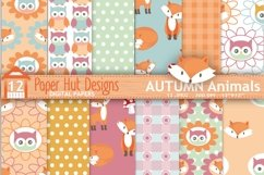 Fox and Owl Digital Papers Product Image 1
