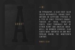 Bondie - Condensed Slab Serif Font Product Image 3