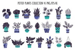 Potted Plants - Vector Collection Product Image 2