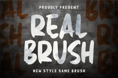 Real Brush Font Product Image 1