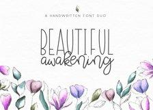 Beautiful Awakening - A Serif & Script Font Duo Product Image 1