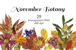 Fall flowers, herbs and leaves photo clipart Transparent PNG Product Image 1