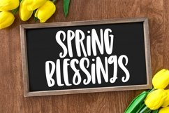 Web Font Spring Days - A Quirky Hand-Lettered Font Product Image 2