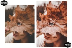 10 Rich And Moody Photoshop Actions And ACR Presets, fall Ps Product Image 2
