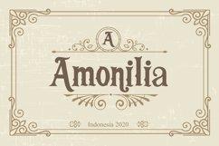 Funkerly Vintage Typeface Serif Font Product Image 5