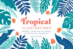 Tropical Illustrations Product Image 1