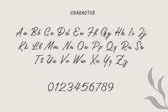 Rosinweed Font duo Product Image 4