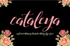 Cataleya Typeface (Full) Product Image 1