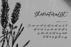 Thenaturalist Caligraphy Wedding Font Product Image 5