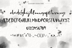 Worthy Story Script Font Product Image 2