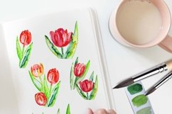 Spring Tulips clipart Product Image 4