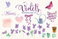 violets flowers watercolor clip art set Product Image 4