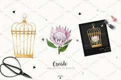 MOTHS and BIRDCAGE watercolor set Product Image 4