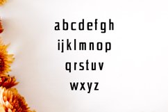 Chrys Sans Serif Typeface Product Image 3