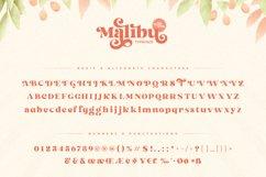 Malibu Fancy Vintage Font Product Image 14