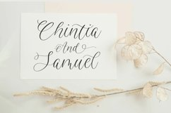 Avalien Stylist Modern Calligraphy Font Product Image 2