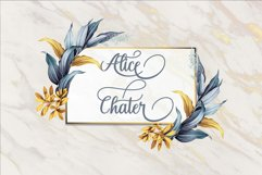 Alice Chater Product Image 4