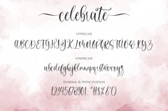 celebrate - moderen calligraphy font Product Image 10