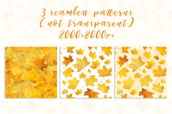 Maple leaves. JPG PNG. Product Image 2