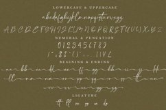 Satteck A Luxury Calligraphy Signature Font Product Image 2
