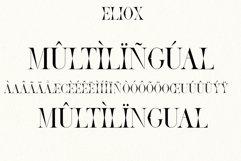Eliox Modern Serif font Product Image 3