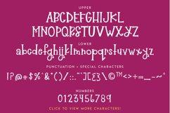 Raeberry Serif Product Image 2