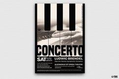 Special Pianist Flyer Bundle Product Image 3