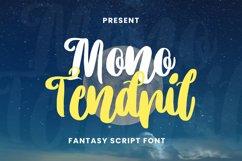 Mono Tendril Font Product Image 1