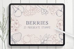 Berries Procreate Stamp Brushes Product Image 1
