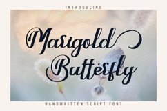 Marigold Butterfly Product Image 1