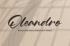 Oleandro Modern Calligraphy Font Product Image 1