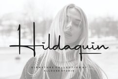 Hildaquin Product Image 1