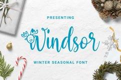 Windsor Font Product Image 1