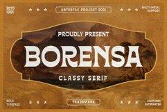 Borensa Product Image 1