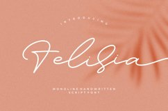 Felisia - Monoline Script Font Product Image 1