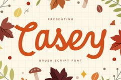 Casey Font Product Image 1
