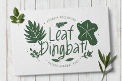 LeafDingbat Font Product Image 1