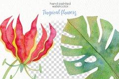 Watercolor Tropics Clipart Product Image 6