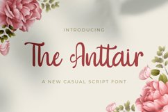 The Anttair - Handwritten Font Product Image 1