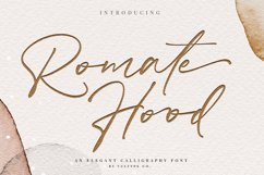 Calligraphy Font Bundle| 45 Fonts Collections Product Image 5