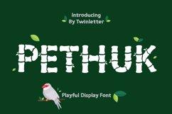 Pethuk Product Image 6