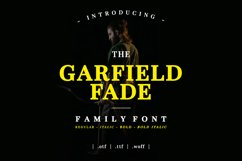 Garfield Fade Family Font Product Image 1