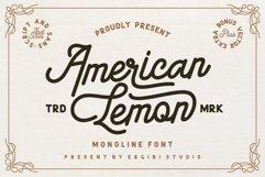 American Lemon Font Duo Product Image 1