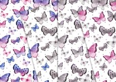 Sweet Butterflies 12x12 Product Image 2