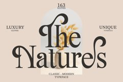 The Natures / Modern Font Product Image 1