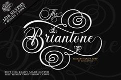 The Briantone - Elegant Script Font Product Image 1