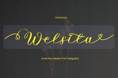 Welsita Product Image 1